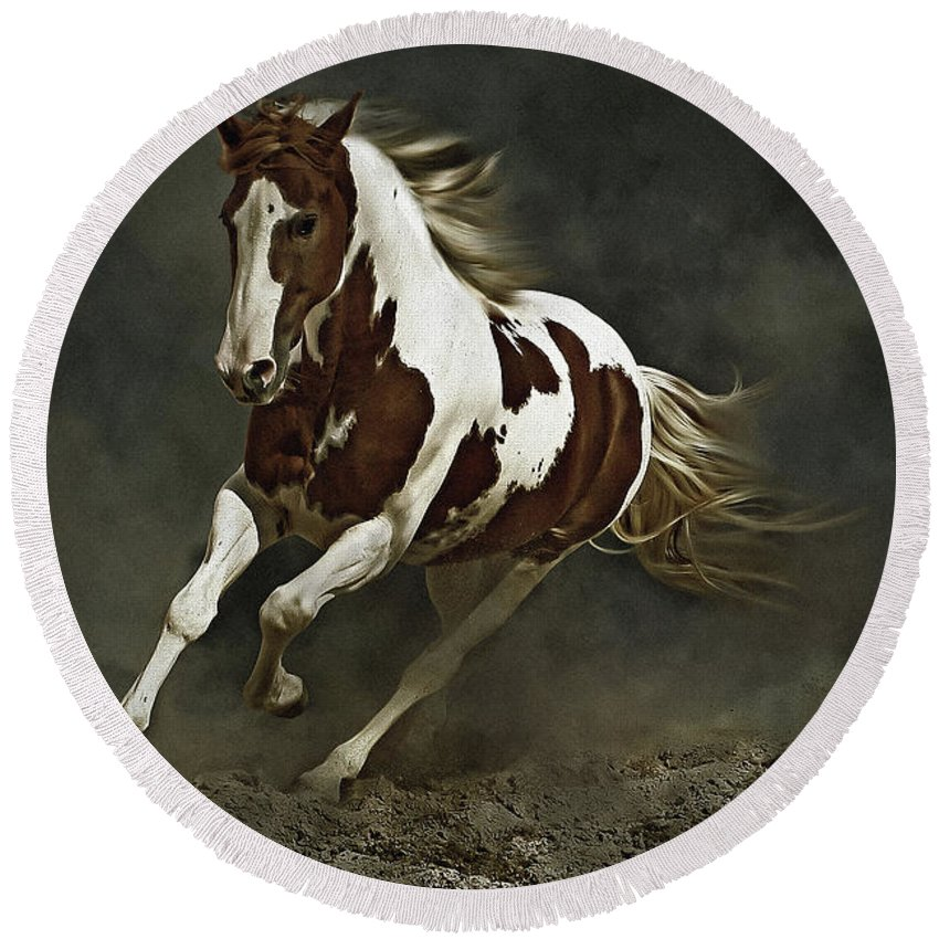 Horse Round Beach Towel featuring the photograph Pinto Horse In Motion by Dimitar Hristov