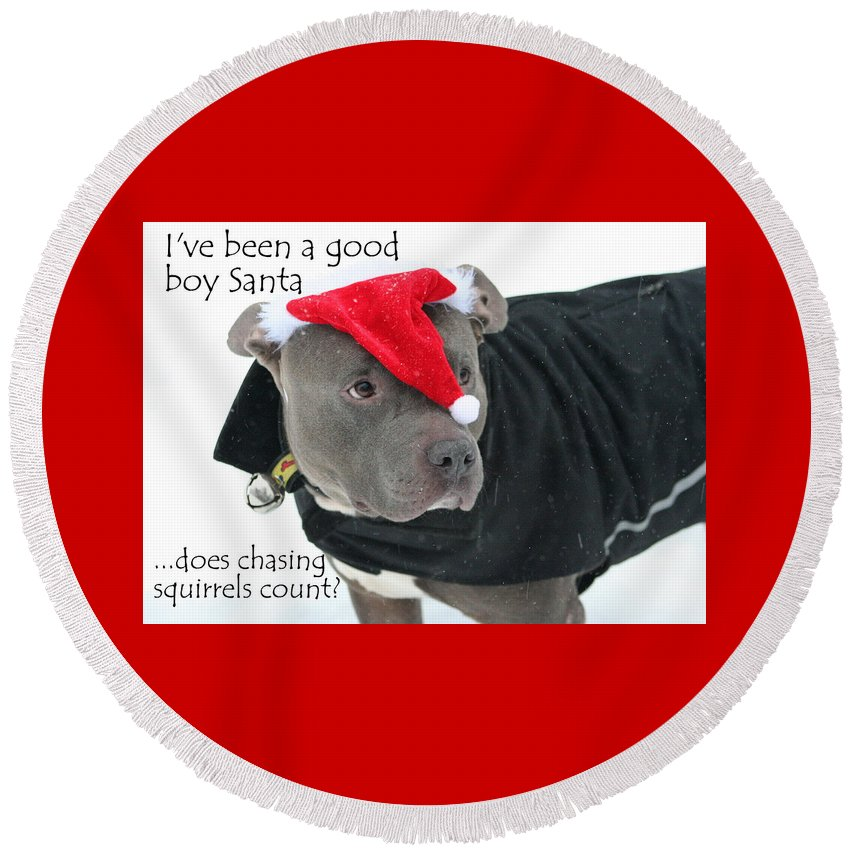 Pit Bull Round Beach Towel featuring the photograph Pit Bull Christmas Two by Sue Long