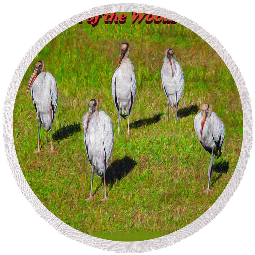 Birds Round Beach Towel featuring the photograph Planet Of The Woodstorks 2 by John M Bailey