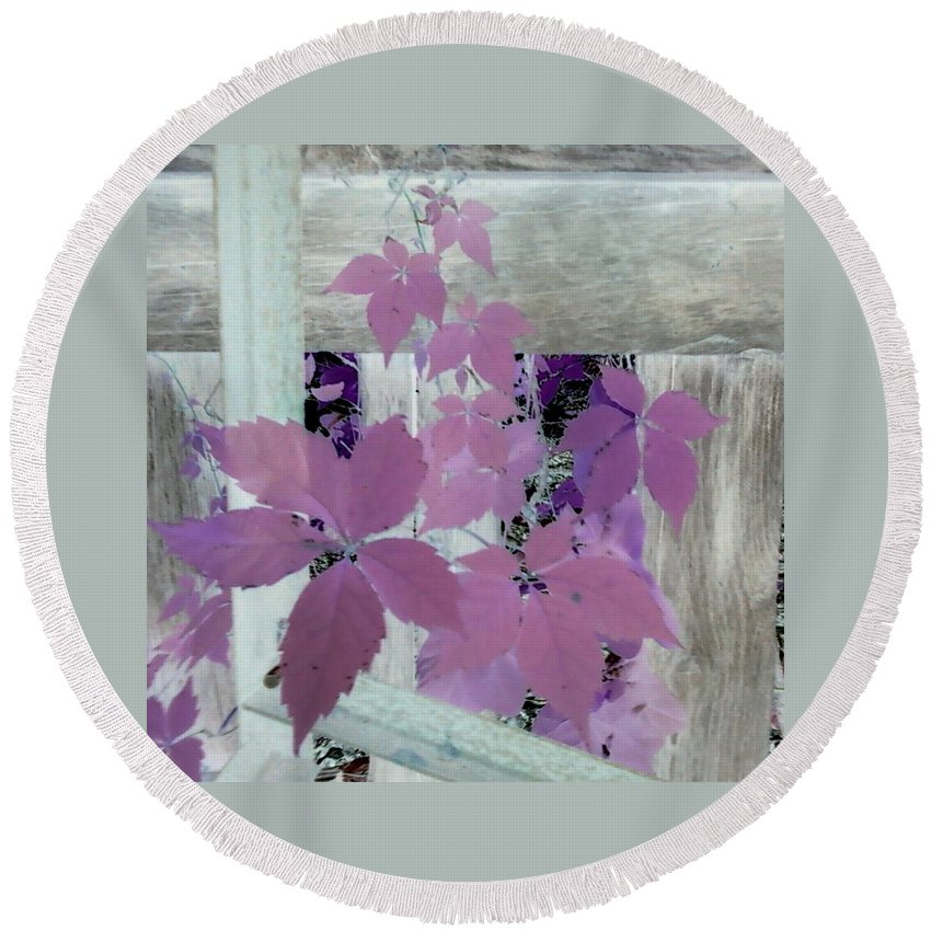 Barn Wood Plant Old Purple Round Beach Towel featuring the photograph Plant In Negative by Cindy New