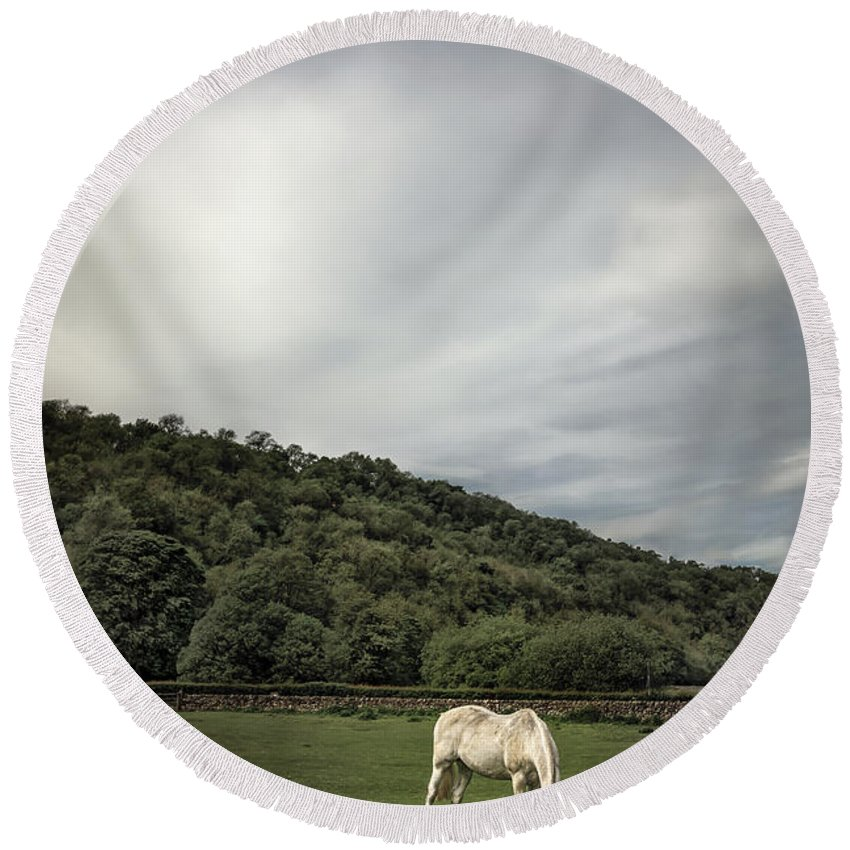Animal Round Beach Towel featuring the photograph Pleasant Valley Sunday by Evelina Kremsdorf