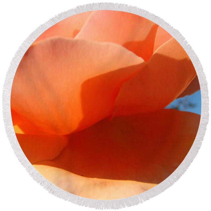 Rose Round Beach Towel featuring the photograph Plush Peach by Teri Schuster