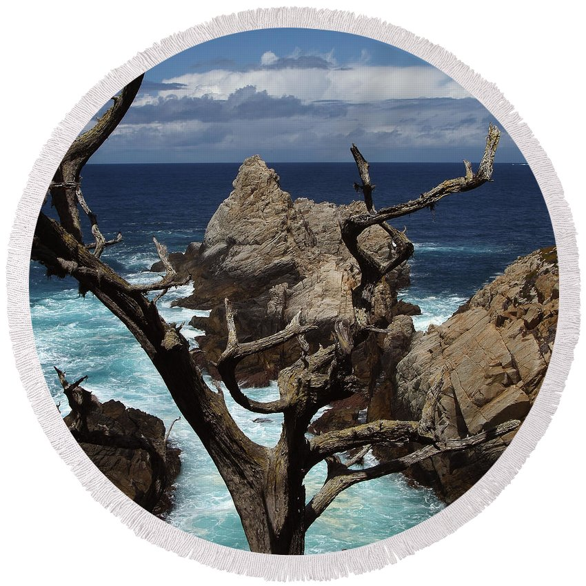 Carmel Round Beach Towel featuring the photograph Point Lobos Rocks and Branches by Charlene Mitchell