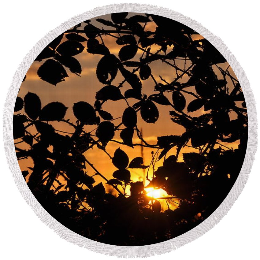 Sunset Round Beach Towel featuring the photograph Pointed Shadow by Brittany Horton