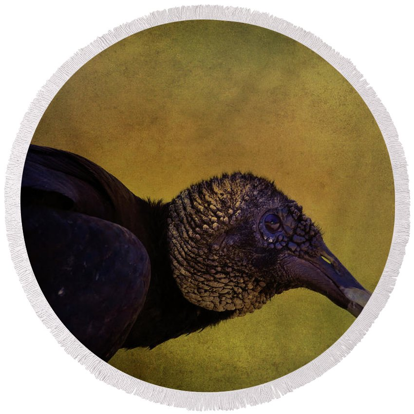 Wildlife Round Beach Towel featuring the photograph Portrait Of A Vulture by Deborah Benoit