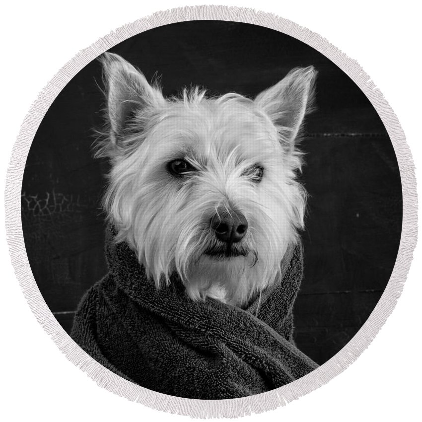 Breed Photographs Round Beach Towels