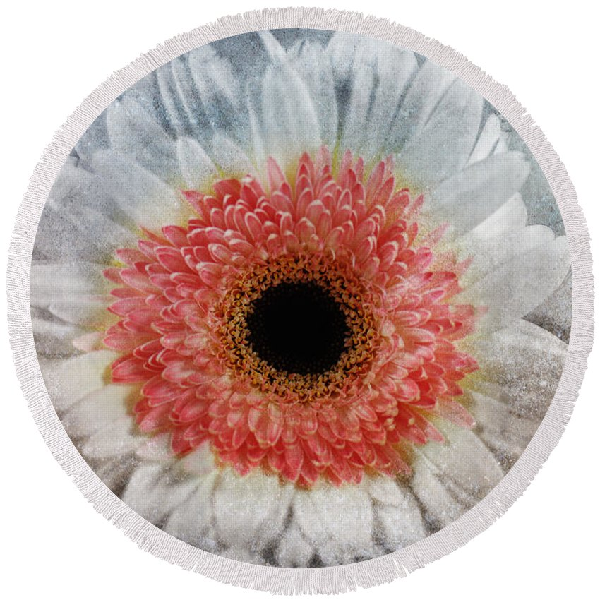 Macro Round Beach Towel featuring the mixed media Pretty Gerbera Macro by Georgiana Romanovna