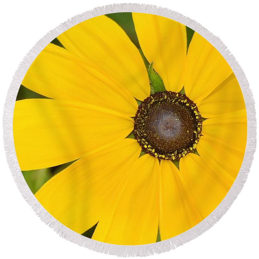 Yellow Flower Round Beach Towel featuring the photograph Pretty In Yellow by David Lee Thompson