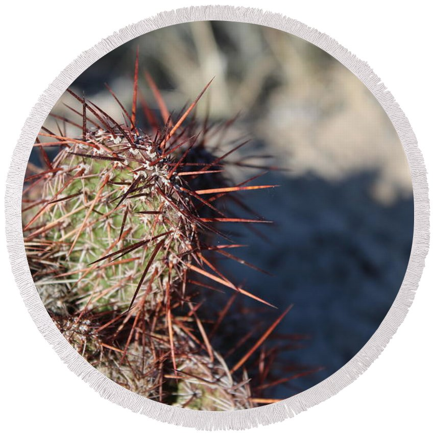 North Round Beach Towel featuring the photograph Prickly Pear by Nicholas Miller