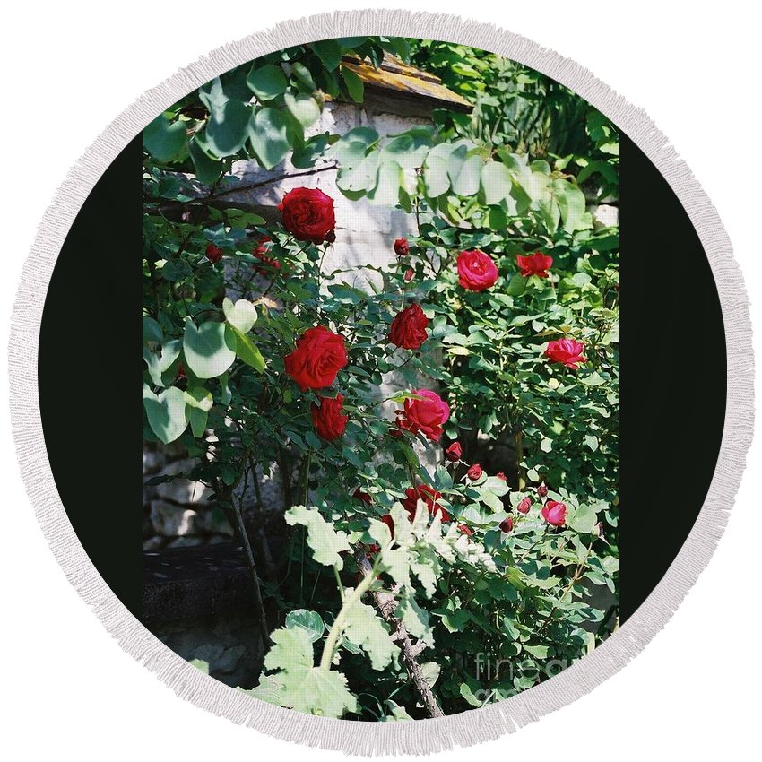 Floral Round Beach Towel featuring the photograph Provence Red Roses by Nadine Rippelmeyer