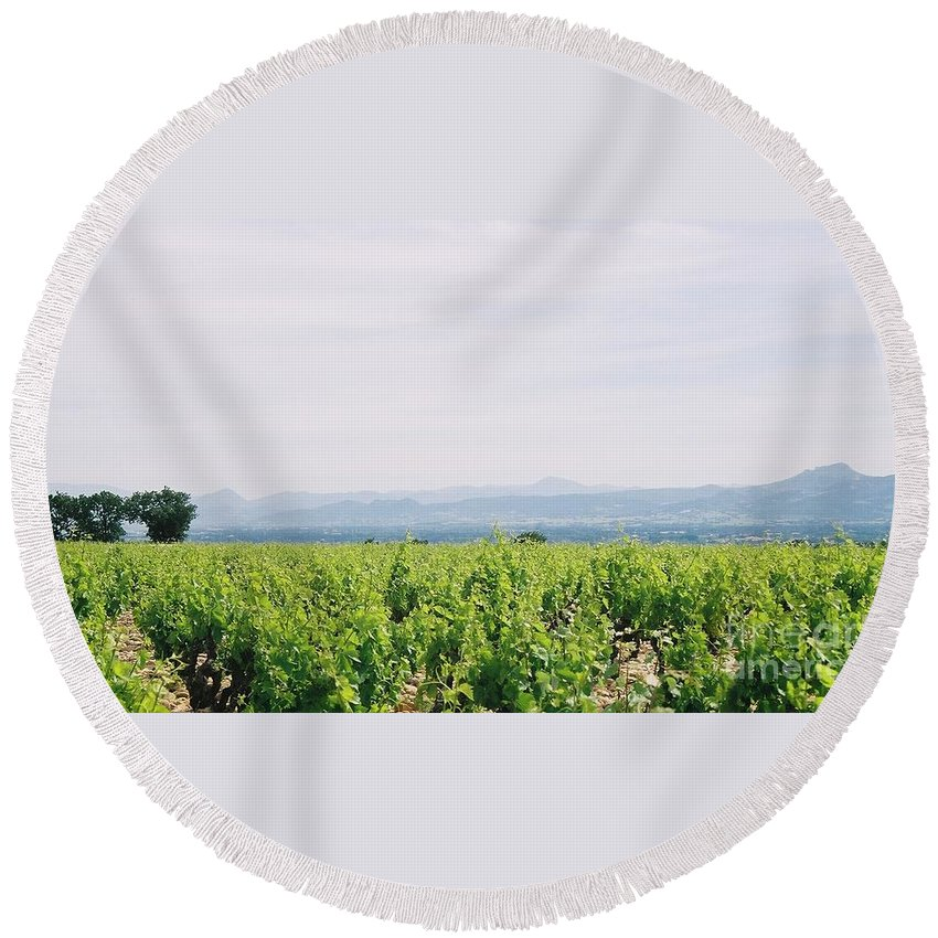 France Round Beach Towel featuring the photograph Provence Spring Vineyard by Nadine Rippelmeyer