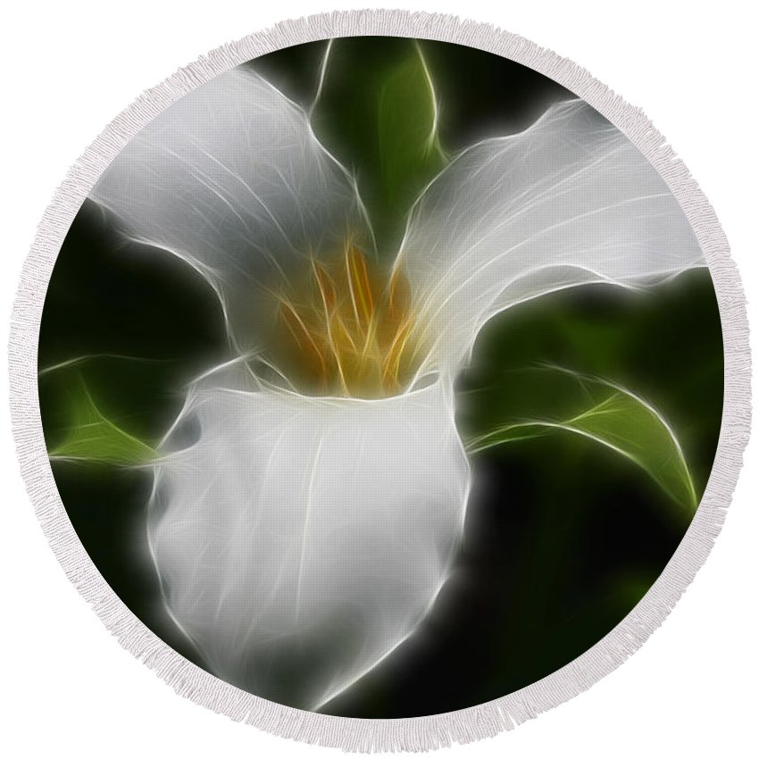 Flower Round Beach Towel featuring the photograph Pure White Trillium by Deborah Benoit