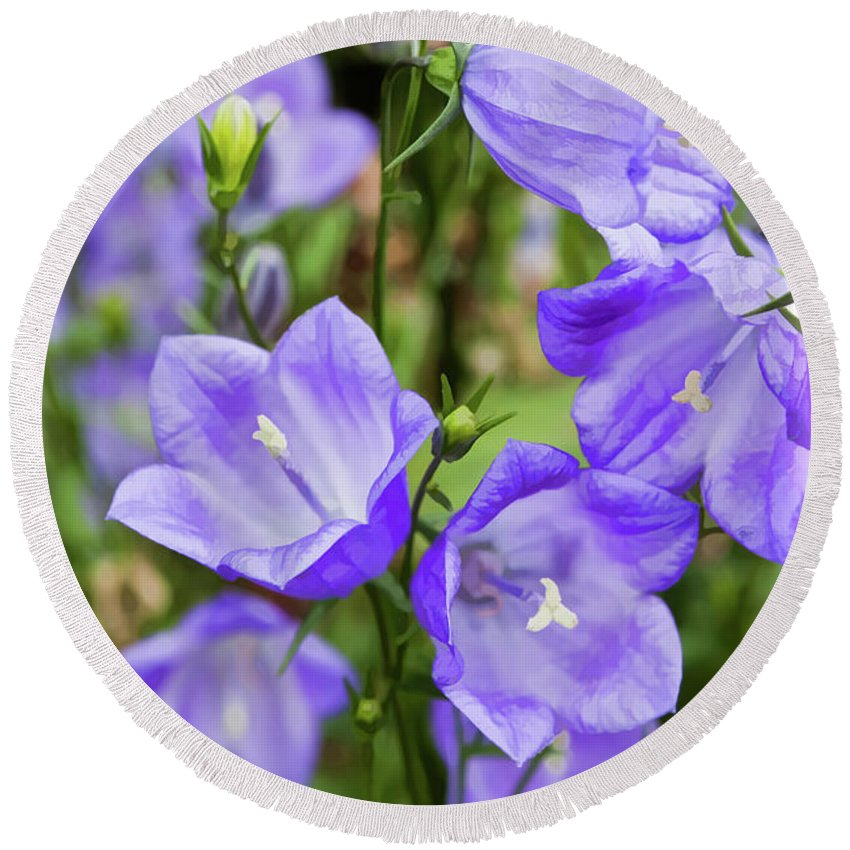 Purple Round Beach Towel featuring the photograph Purple Bell Flowers by Joann Copeland-Paul