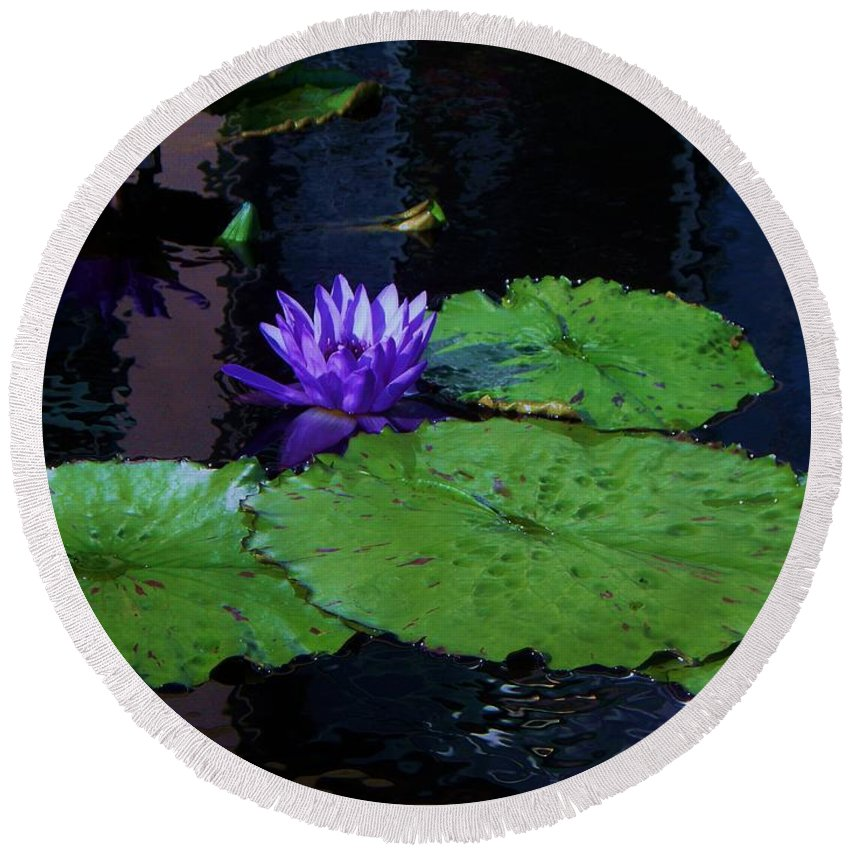 Photograph Round Beach Towel featuring the photograph Purple Blue Lily by Eric Schiabor