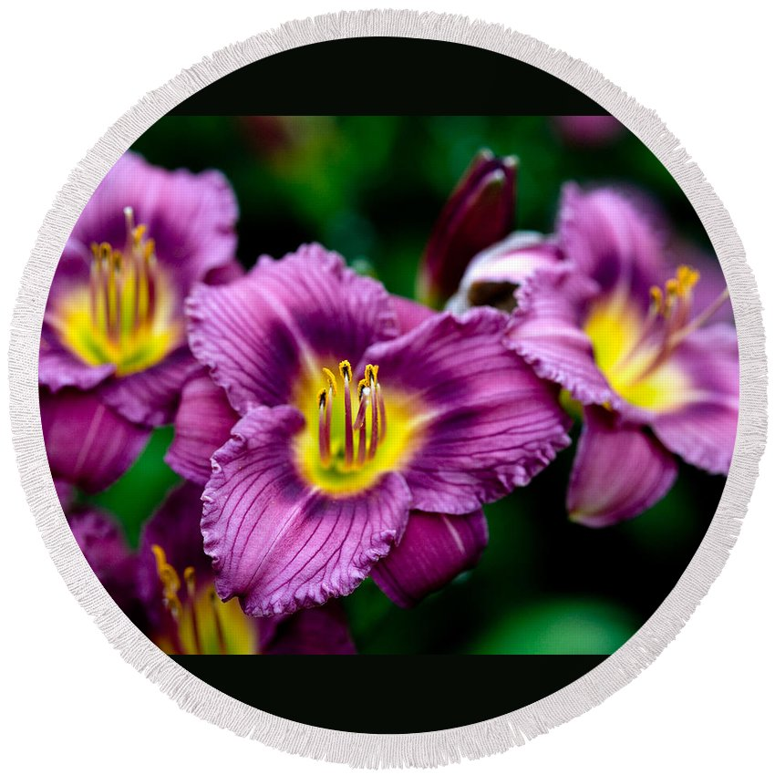 Flower Round Beach Towel featuring the photograph Purple Day Lillies by Marilyn Hunt