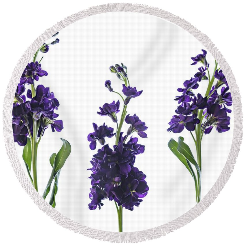 Purple Round Beach Towel featuring the photograph Purple Floral 2 by Kelly Merlini