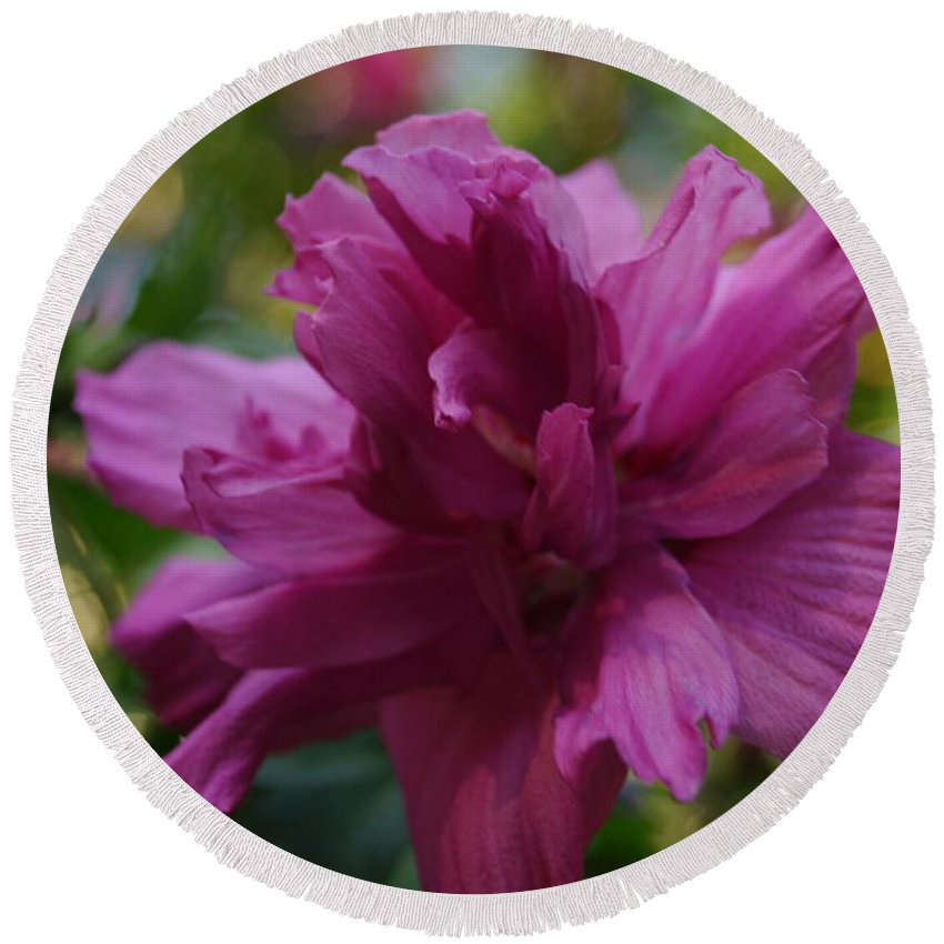 Flowers Round Beach Towel featuring the photograph Purple Flower by Jeffery L Bowers