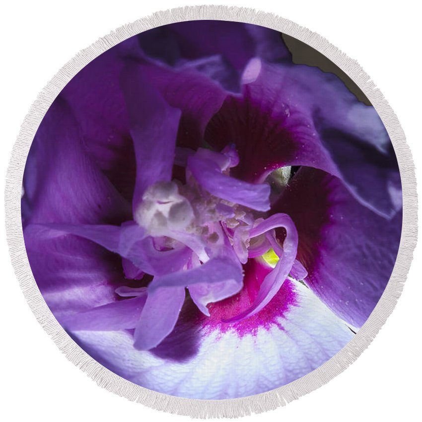Creative Round Beach Towel featuring the photograph Purple Flower by Larry Braun
