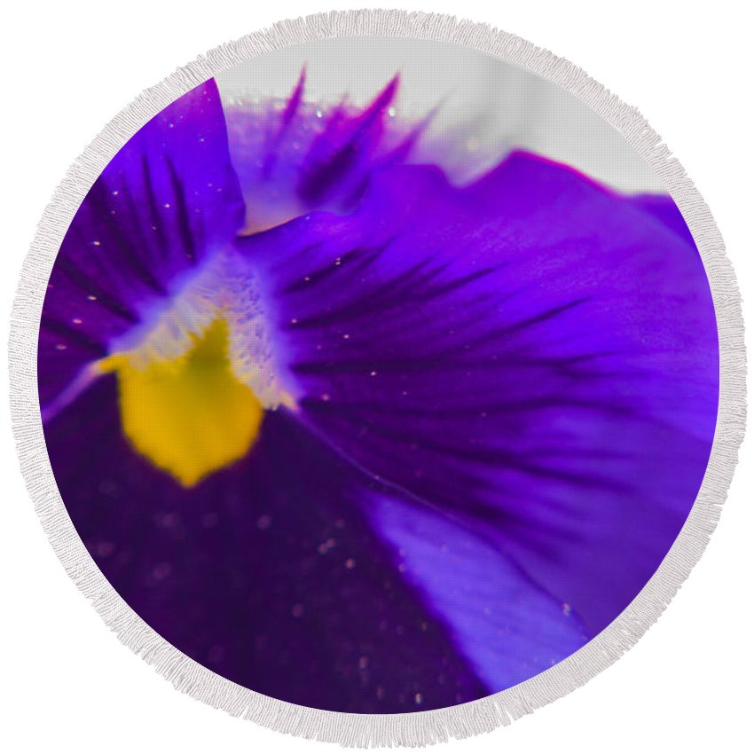 Purple Round Beach Towel featuring the photograph Purple Flower by Miranda Strapason