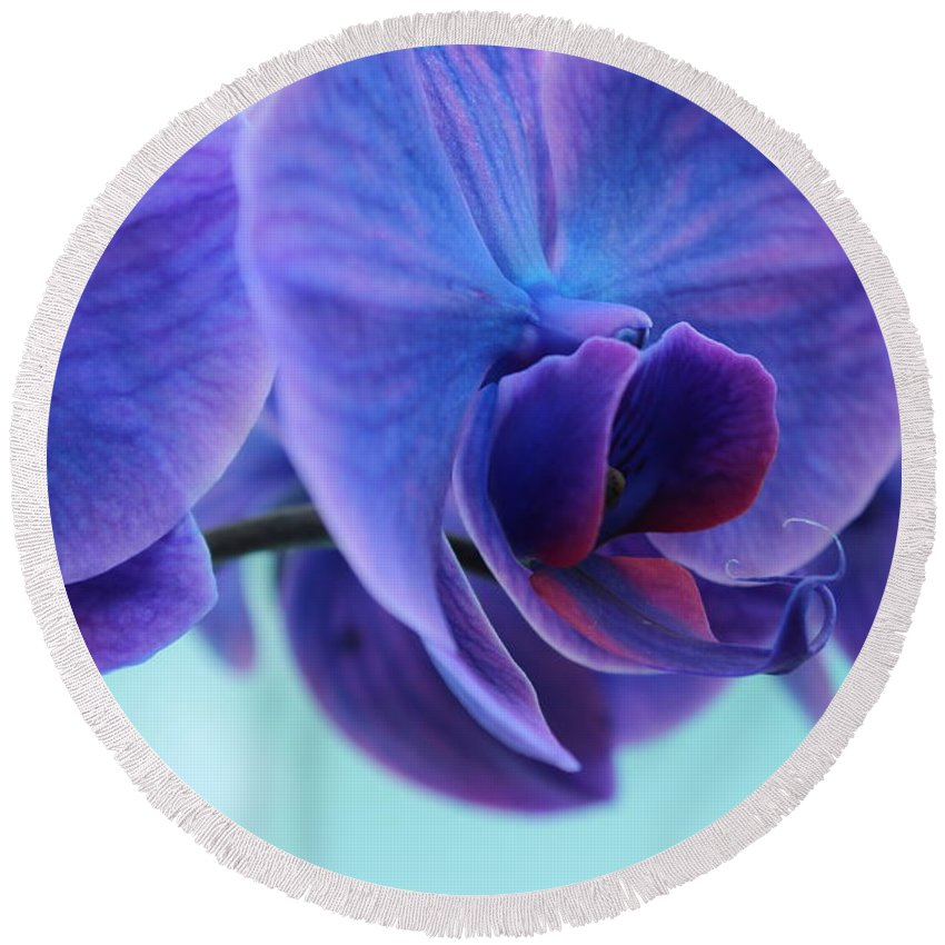 Flora Round Beach Towel featuring the photograph Purple Heart by Lynn Wist