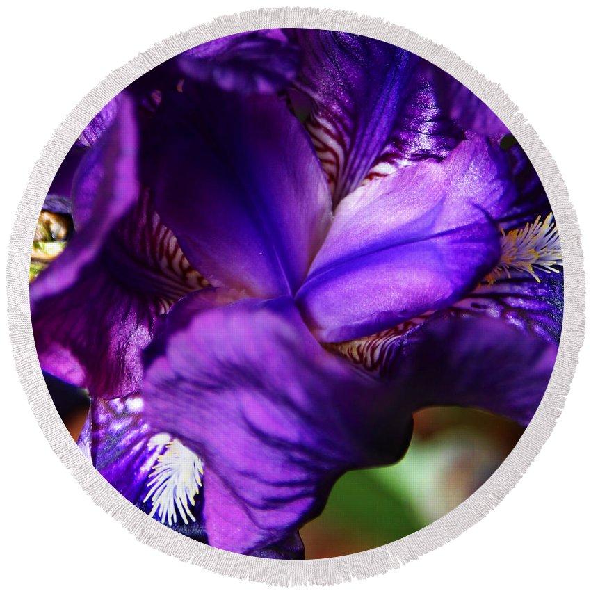 Round Beach Towel featuring the photograph Purple Iris by Anthony Jones
