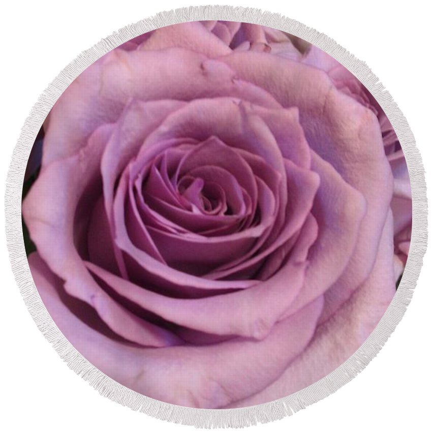 Purple Round Beach Towel featuring the photograph Purple Rose by Marie Millard