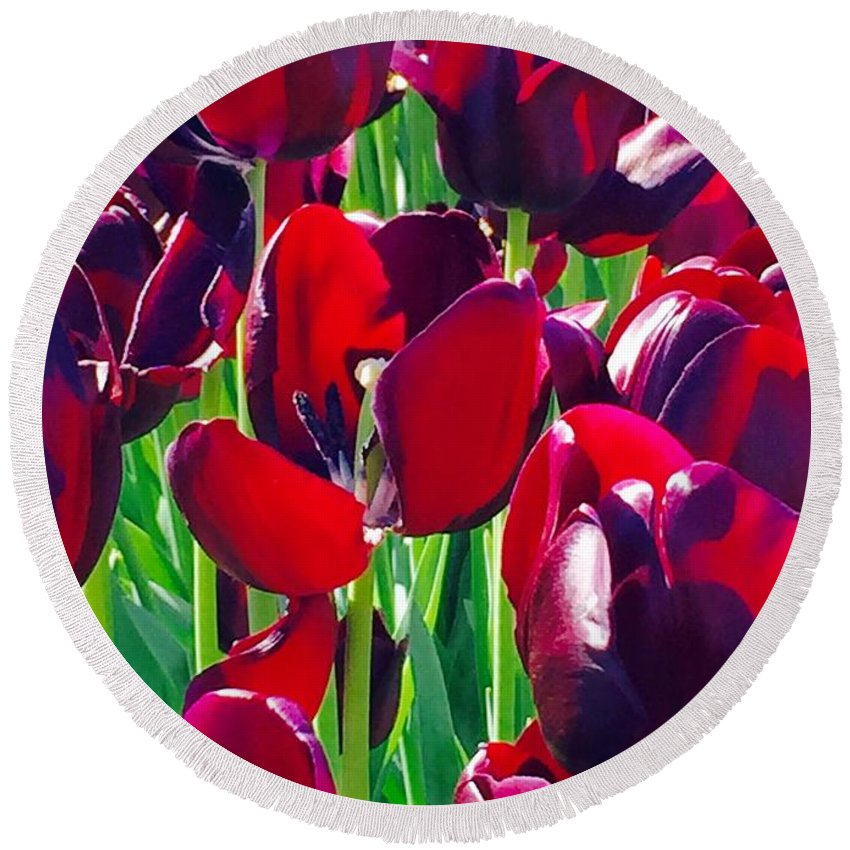 Purple Royals Tulips Round Beach Towel featuring the photograph Purple Royals Tulips by Susan Garren