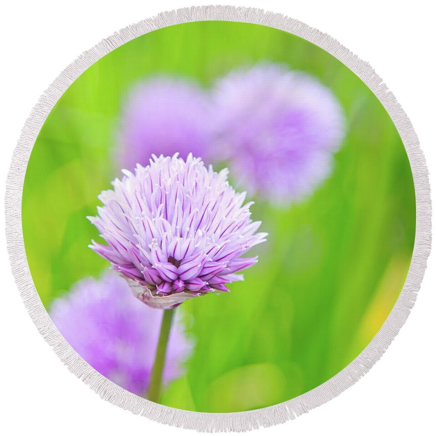 Purple Flowers Round Beach Towel featuring the photograph Purple Spring 11 by Alex Art and Photo