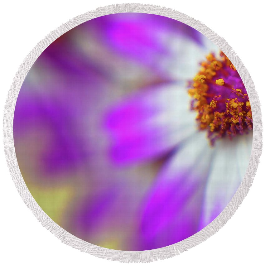 Flora Round Beach Towel featuring the photograph Purple Spring 12 by Alex Art and Photo