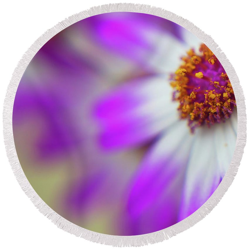 Flora Round Beach Towel featuring the photograph Purple Spring 7 by Alex Art and Photo