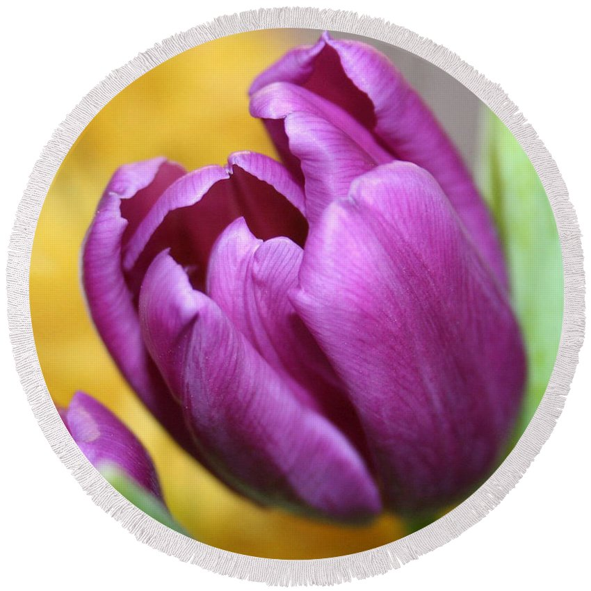 Flowers Nature Round Beach Towel featuring the photograph Purple Spring by Linda Sannuti