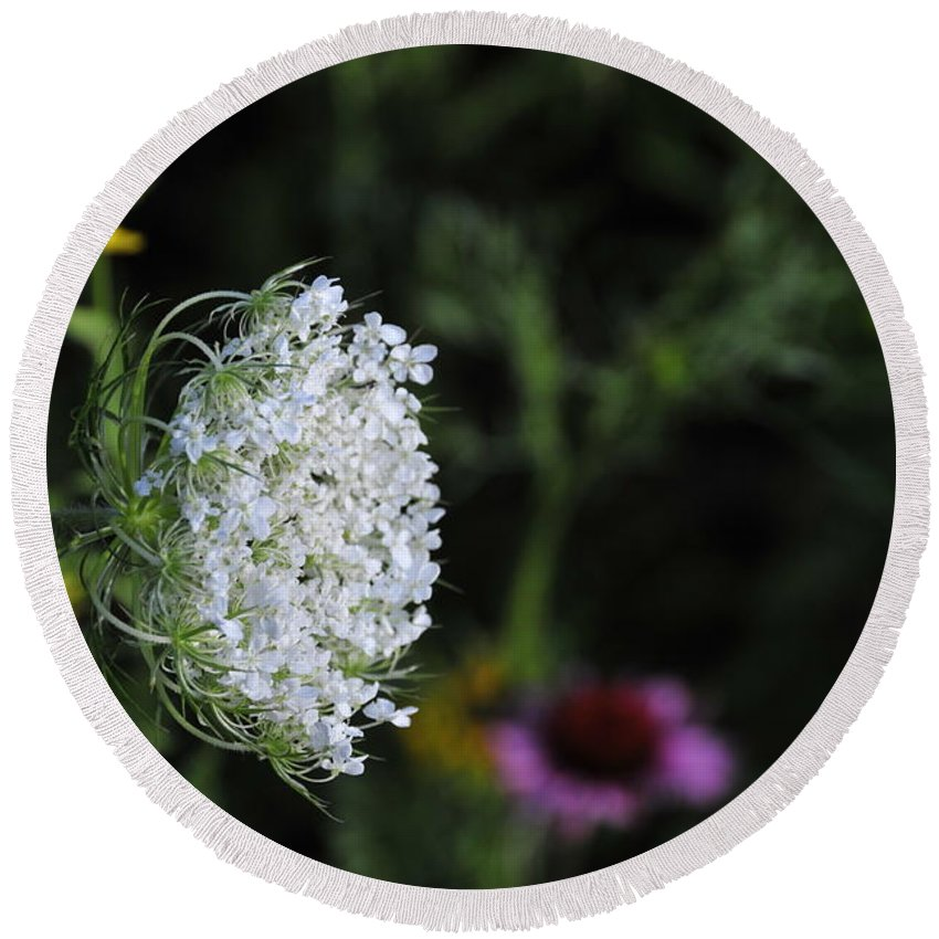 Flower Round Beach Towel featuring the photograph Queen Anns Lace by David Arment