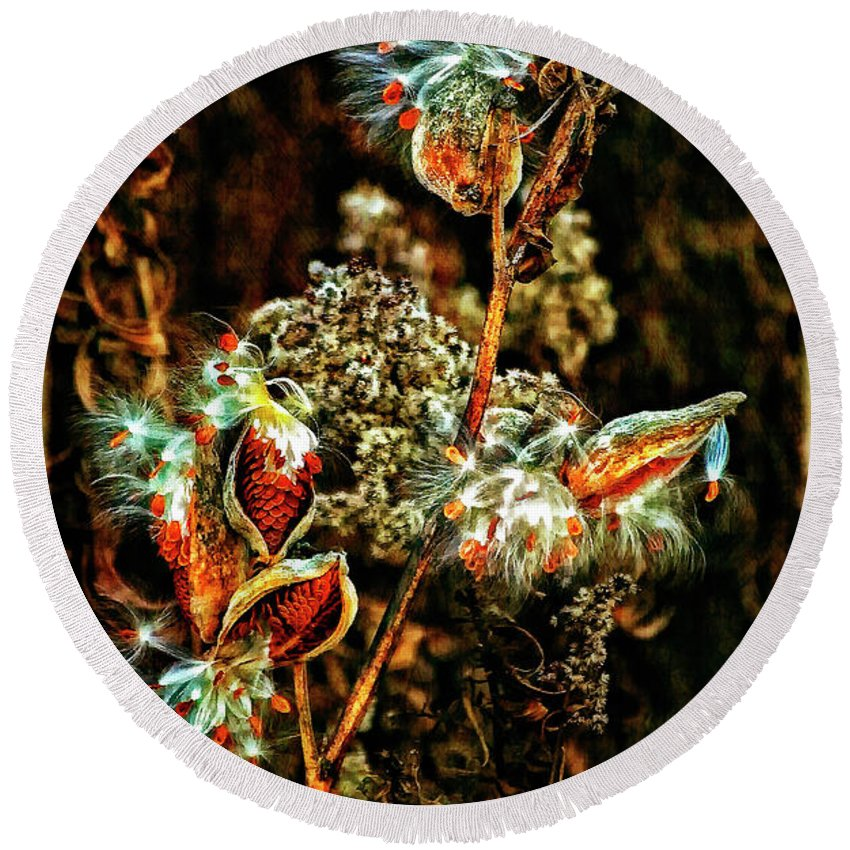 Milkweed Round Beach Towel featuring the photograph Queen Of The Ditches II by Steve Harrington