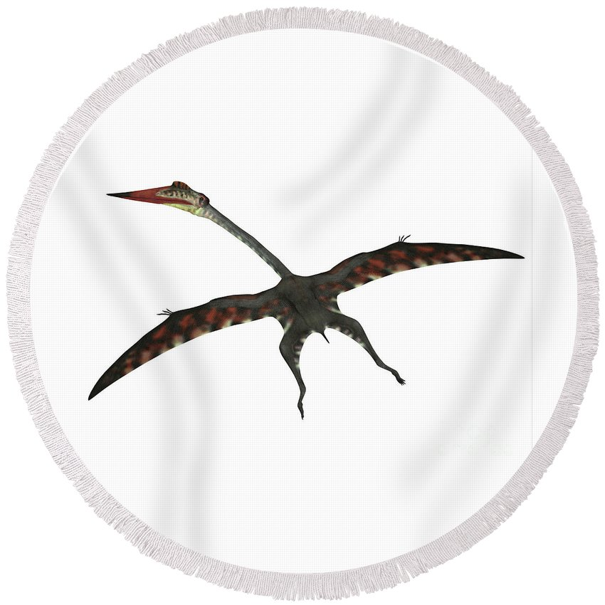 Quetzalcoatlus Round Beach Towel featuring the digital art Quetzalcoatlus Flying Reptile by Corey Ford