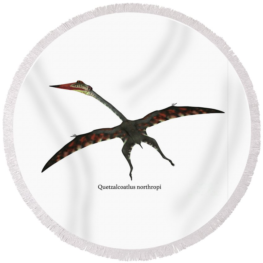 Quetzalcoatlus Round Beach Towel featuring the digital art Quetzalcoatlus Flying Reptile With Font by Corey Ford