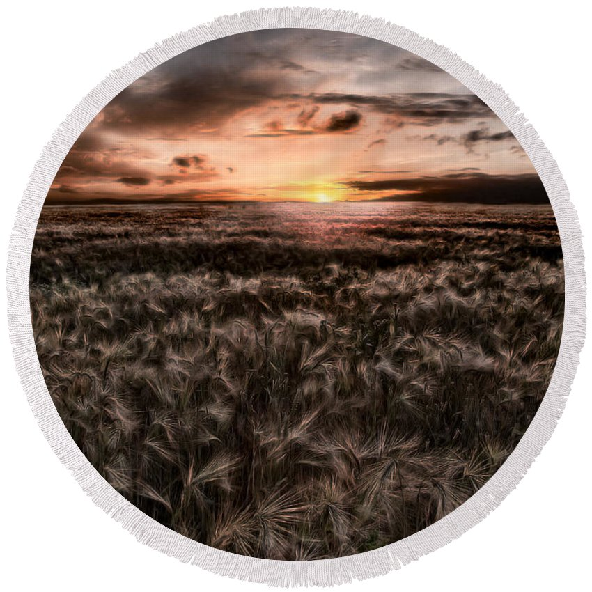 Summer Round Beach Towel featuring the photograph Quiet Estivation by Joachim G Pinkawa