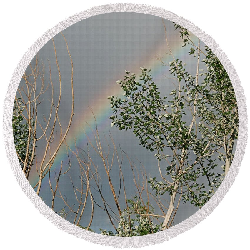 Rainbow Round Beach Towel featuring the photograph Rainbow In The Trees by Katherine Nutt