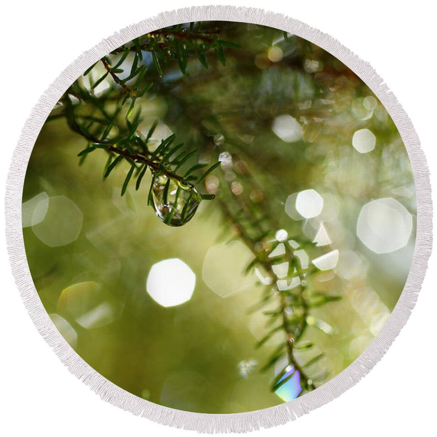 Dew Round Beach Towel featuring the photograph Raindrops by Gaspar Avila