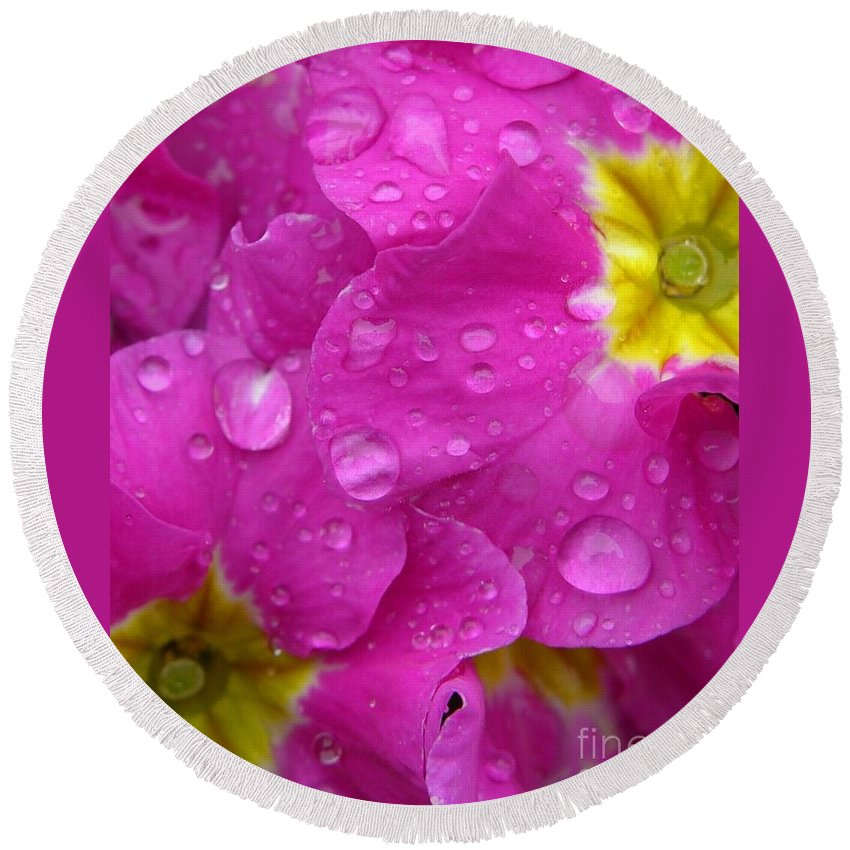 Pink Round Beach Towel featuring the photograph Raindrops On Pink Flowers by Carol Groenen