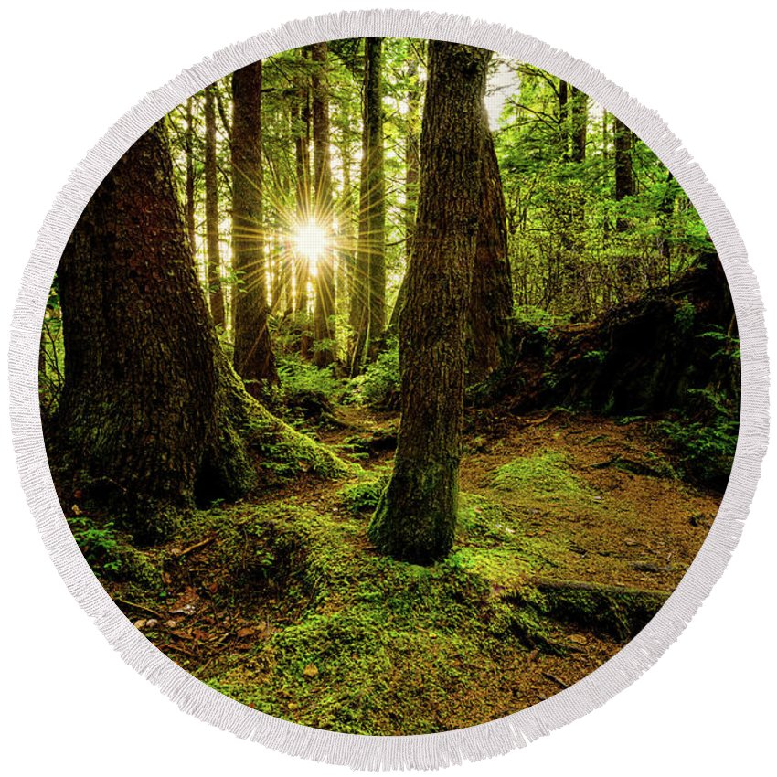 Olympic National Park Round Beach Towels