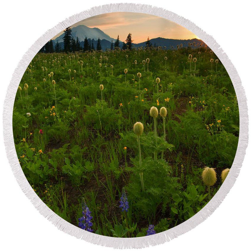 Meadow Round Beach Towel featuring the photograph Rainier Wildflower Light by Mike Dawson