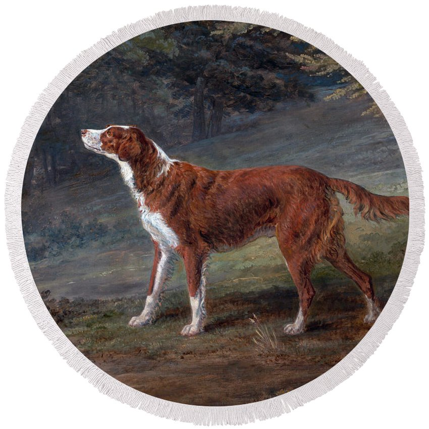 George Garrard Round Beach Towel featuring the painting Ranger A Setter The Property Of Elizabeth Gray by George Garrard