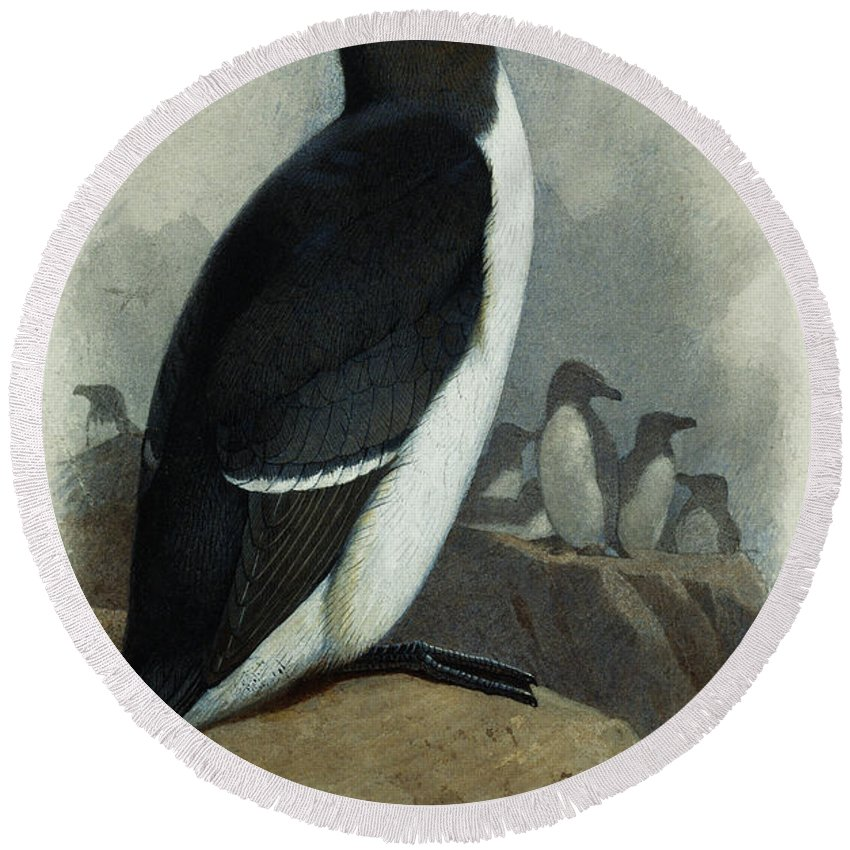 Razorbill Round Beach Towels