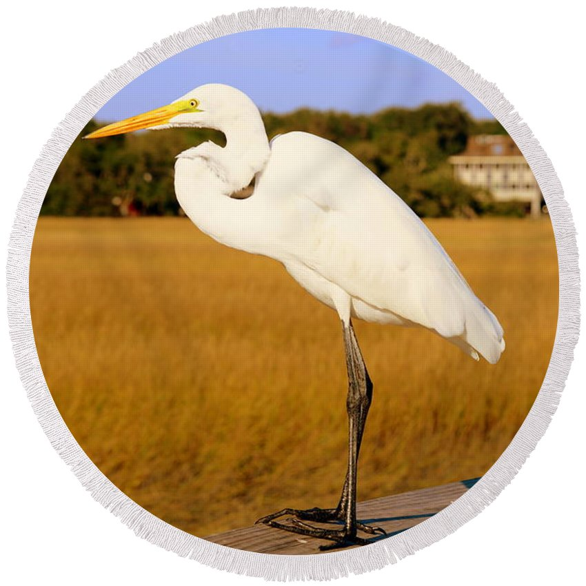 Great White Egret Round Beach Towel featuring the photograph Ready For Take Off by Lisa Wooten