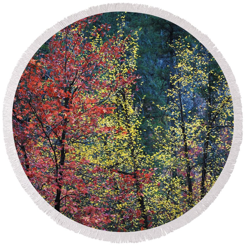 Landscape Round Beach Towel featuring the photograph Red And Yellow Leaves Abstract Horizontal Number 1 by Heather Kirk