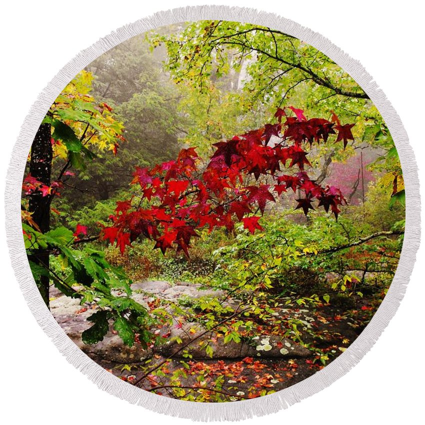 Rock City Round Beach Towel featuring the photograph Red Maples by Lori Mahaffey