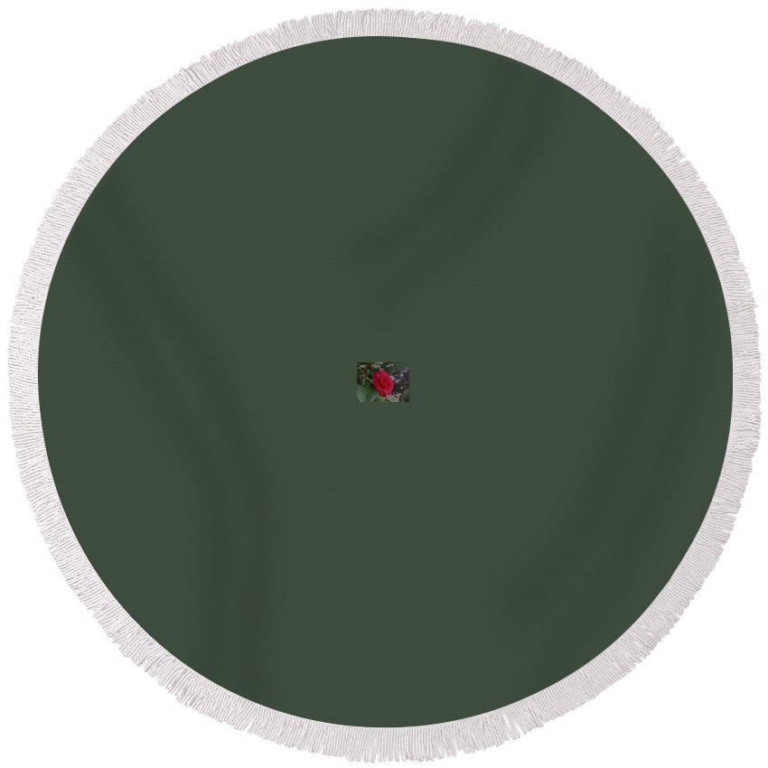 Red Red Rose Round Beach Towel featuring the photograph Red Out by R Chambers