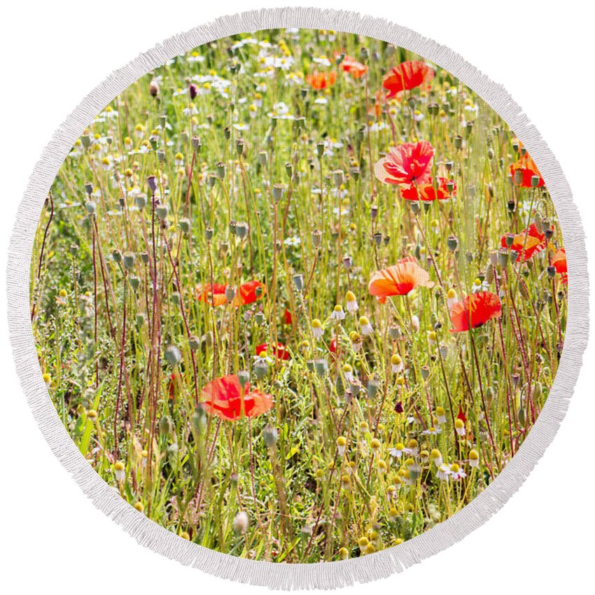 Nature Round Beach Towel featuring the photograph Red Poppies And Wild Flowers by Pati Photography