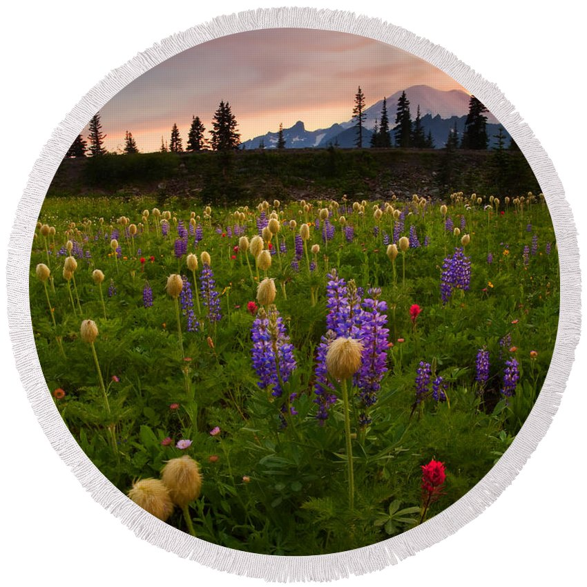 Anenome Round Beach Towel featuring the photograph Red Sky Meadow by Mike Dawson