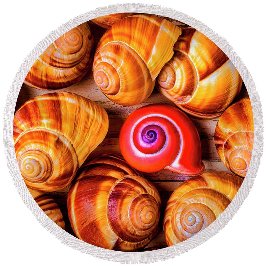 Sea Shell Round Beach Towel featuring the photograph Red Snail Shell by Garry Gay